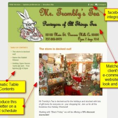 Mr Tromblys Tea – newsletter